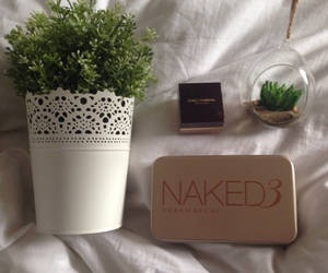 luxe, maquillage, and plante image