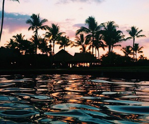 background, palmtrees, and pool image