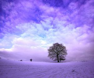 winter, nature, and sky image
