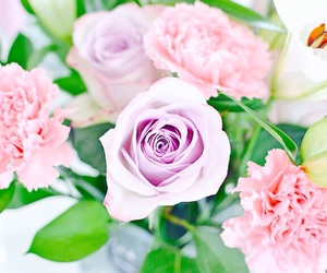 flowers, sweet, and pretty image