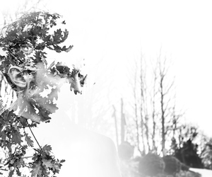 double exposure, light, and forest image