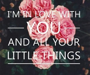 easel, little things, and Lyrics image
