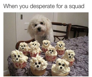 dog, funny, and cupcakes image