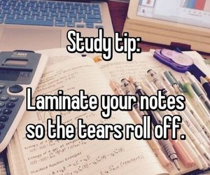 funny, school, and study image