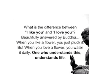 Buddha, quote, and love image