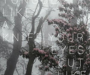 bands, bmth, and cool image