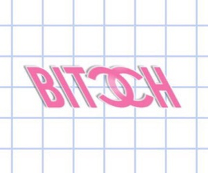 bitch and grid image
