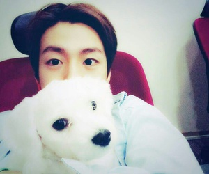 lee hyun woo, korean, and puppy image