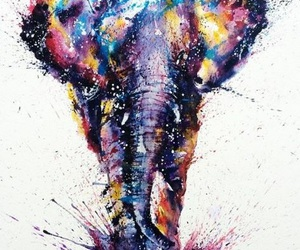 animals, colours, and painting image