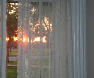 aesthetic, sun, and window image