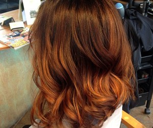 brown, copper, and curly image