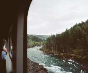 forest and train image