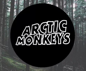 wallpaper, arctic, and arctic monkeys image