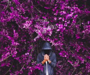 beautiful, flowers, and mysterious image