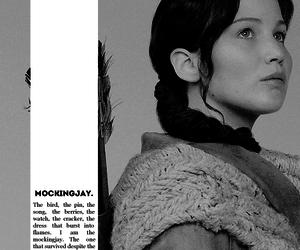 catching fire, katniss everdeen, and mockingjay image