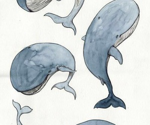 whale, art, and wallpaper image