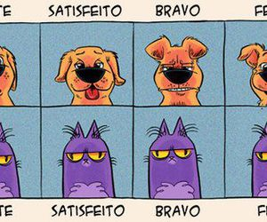 cat, feliz, and dog image
