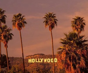hollywood, california, and palm trees image
