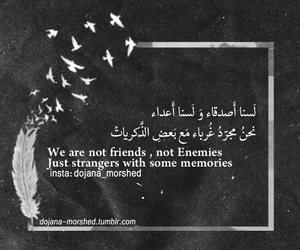 arabic, quotes, and stranger image