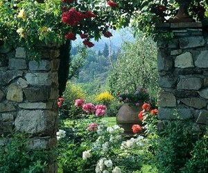 nature, outdoor living, and beautiful garden image