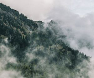 nature, mountains, and fog image