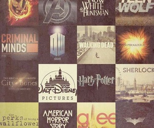 teen wolf, harry potter, and glee image