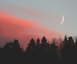 moon, sky, and tree image