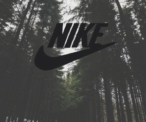 forest, tumblr, and wallpapers image