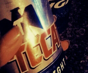 beer and tecate image