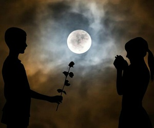 love, moon, and rose image