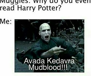 harry potter, avada kedavra, and voldemort image