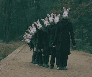 rabbit, bunny, and grunge image