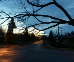 canada, morning, and nature image