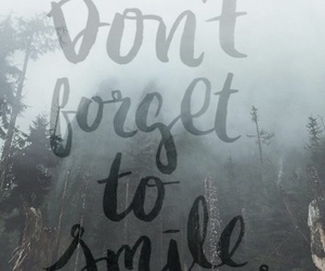 forest, quotes, and smile image
