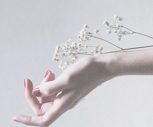 flowers, white, and hand image