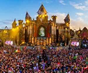 djs, paradise, and show image