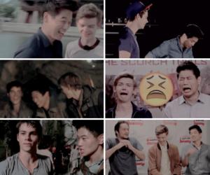 boys, tmr cast, and newt image