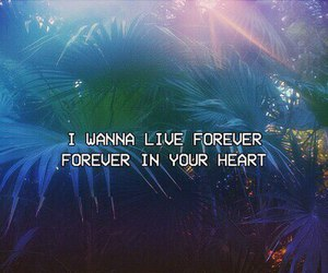 heart, quotes, and forever image