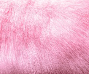 pink, aesthetic, and fur image