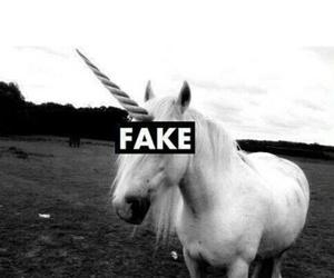 unicorn, fake, and black and white image