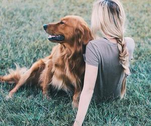 dog, blonde, and girl image