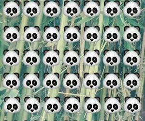 panda, wallpaper, and emoji image