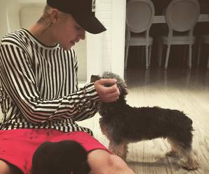 justin bieber, justin, and dog image