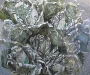 money, flowers, and grunge image