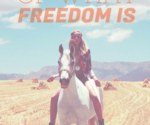 freedom, equestrian, and horse image