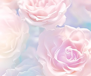 flowers, rose, and pastel image