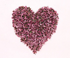 heart, flowers, and love image