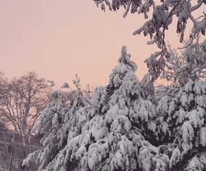 massachusetts, pink, and snow image