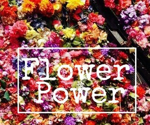 color, power, and wallpaper image