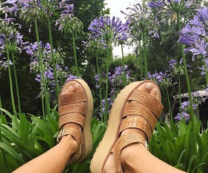 beige, nature, and shoe image
